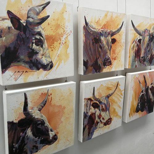 Stellenbosch Art Tours Nguni